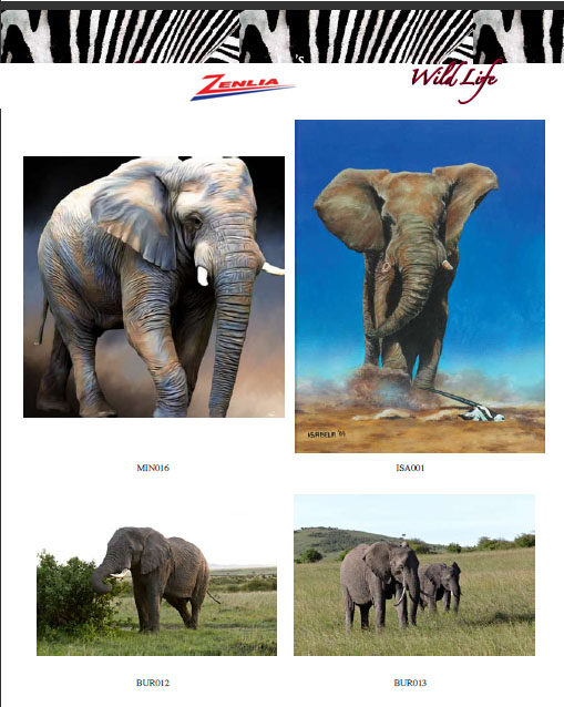 At Wildlife 27 15