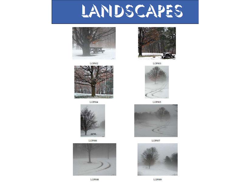 At  Landscapes 23 15