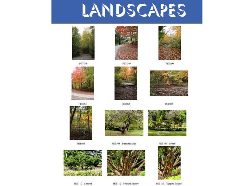 At  Landscapes 32 15