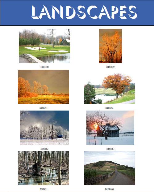 At  Landscapes 5 15
