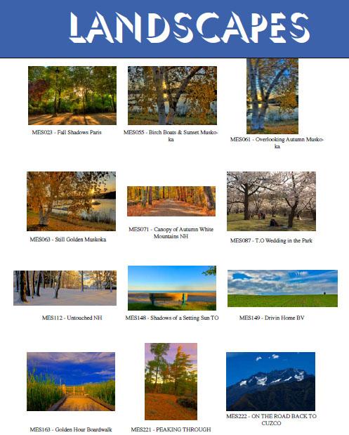 At  Landscapes 29 15